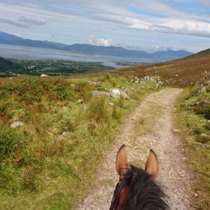 Killarney Reeks Trail – Killarney Riding Stables
