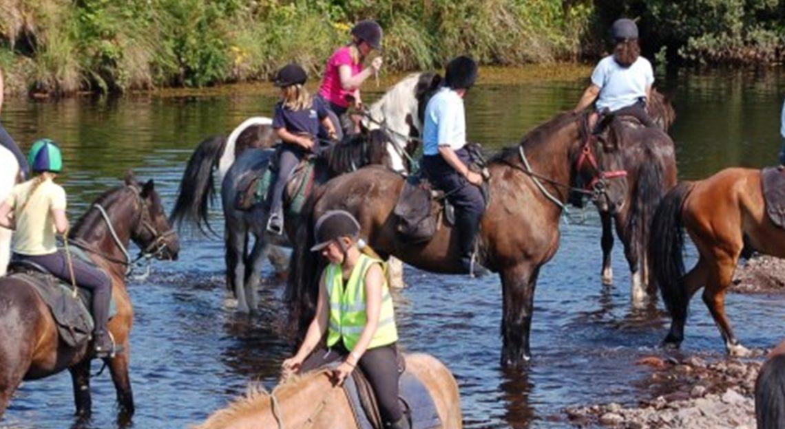 Killarney Riding Stables